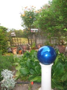 rose & gazing ball
